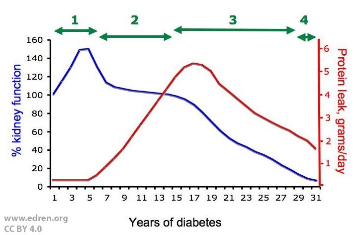 Nyresvikt diabetes mellitus